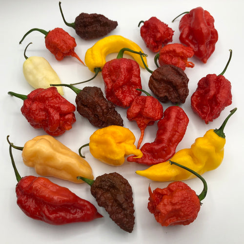 Fresh Super Hot Peppers - Mixed Box: Carolina Reapers, Ghost, Scorpion, ETC. - Bohica Pepper Hut