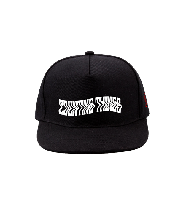 COUNTING THINGS SNAPBACK