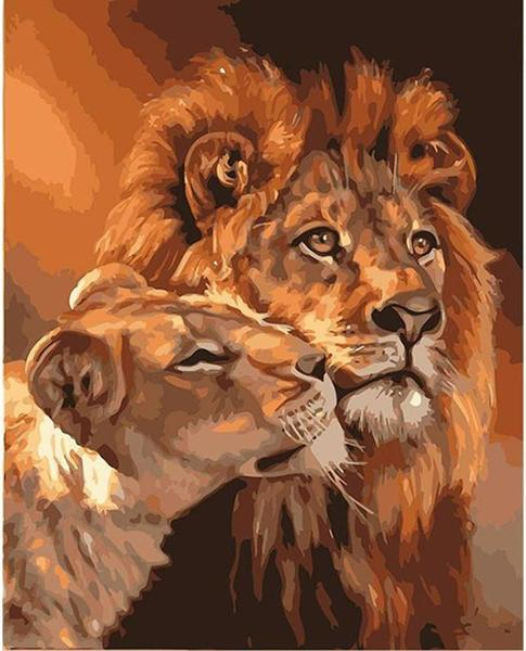 Paint By Numbers Acrylic Oil Painting | Lions