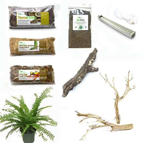 Amazon Tree Boa Snake Bioactive Kit