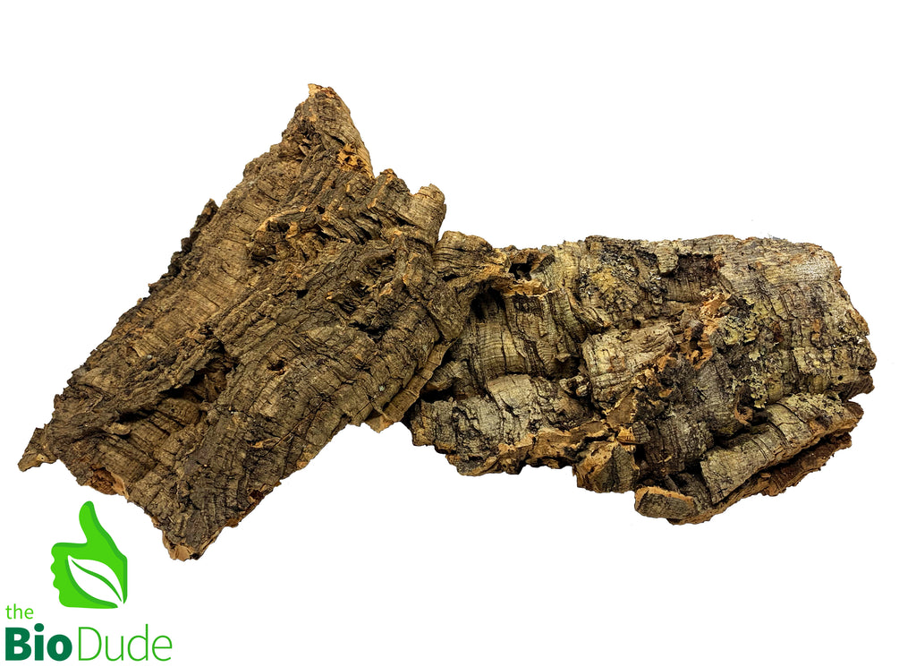 1 lb Cork Bark Flats 2-3 pieces FREE SHIPPING