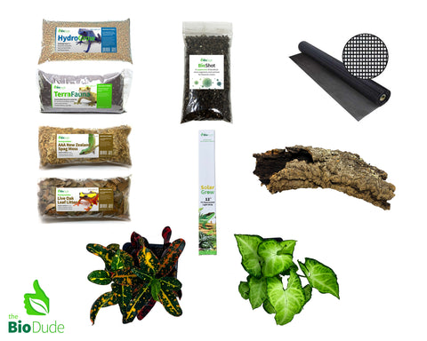 Crested Gecko Bioactive Kit Basic