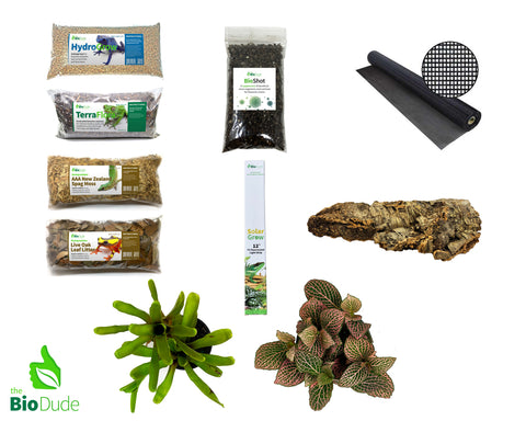 Dart Frog Bioactive Kit BASIC