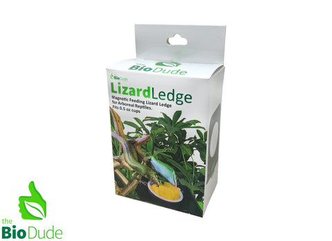 Bio Dude Lizard Ledge GREEN w/ 2 magnets 0.5 oz cup