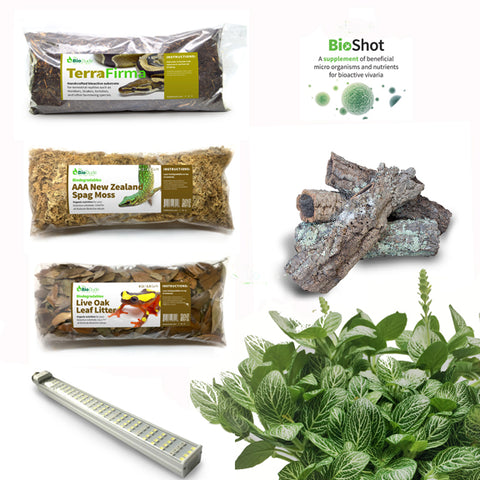 North American Garter Snake BioActive Kit