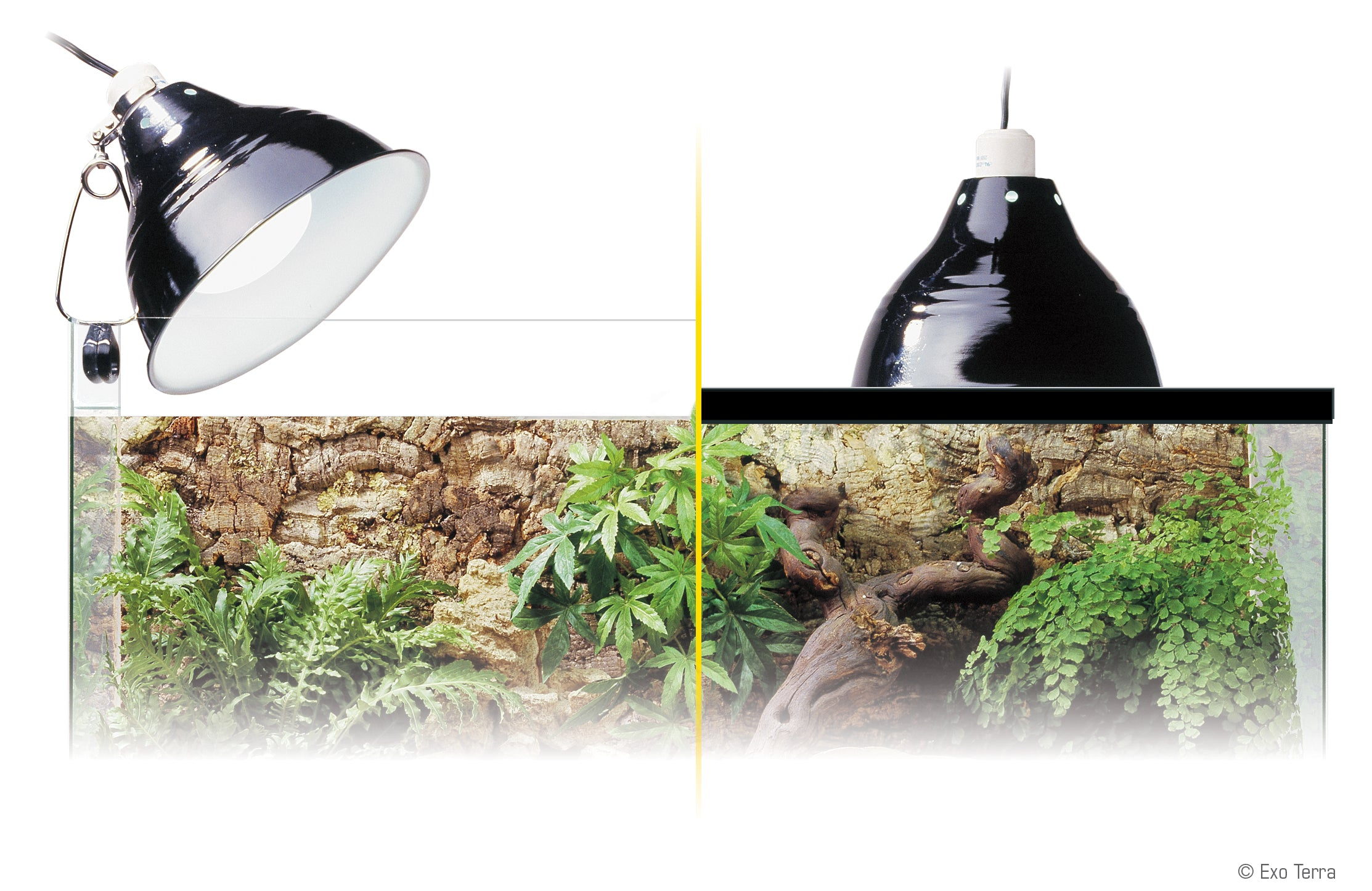 Buy Exo Terra Reptile Glow Light Clamp Lamp Small At The Bio Dude For Only 27 95