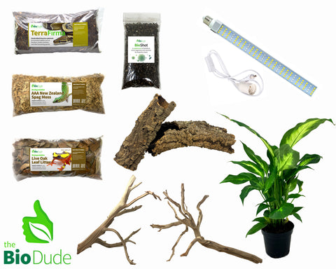 Leaf Tail Gecko Bioactive Kit