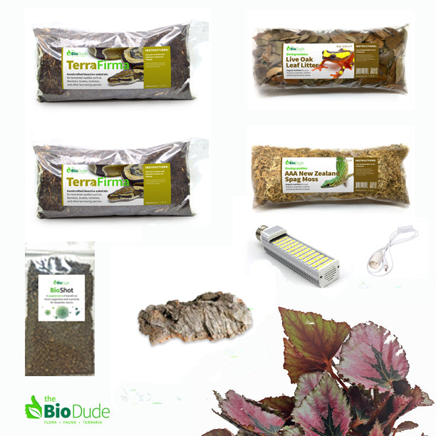Tomato Frog Bioactive Kit