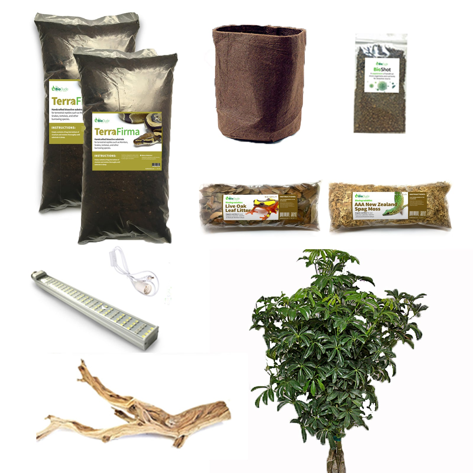 Buy Veiled Chameleon Bioactive Kit At The Bio Dude For Only 229 95
