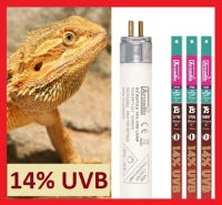 Shop For Reptile And Amphibian Uvb At The Bio Dude