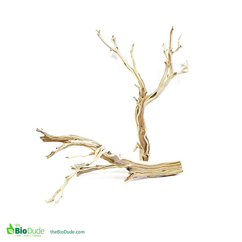 "Sandblasted Ghostwood Branch 17"" - 20"""