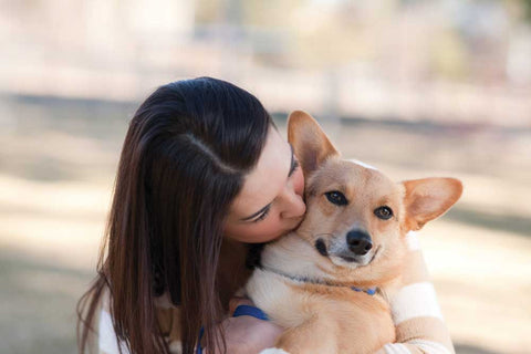 love dogs kissing dogs hugging dogs being physically close to dogs on https://animalwellnessmagazine.com/wp-content/uploads/Woman-kissing-small-dog_dreamstime_m_9114824.jpg