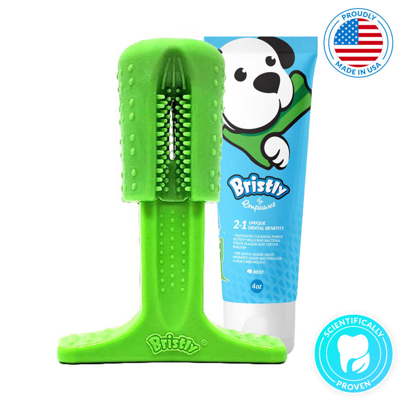 dog toothbrush and toothpaste