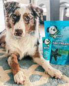 Prebiotic & Enzymatic Dental Treats for Dogs