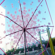 Cherry automatic transparent umbrella YV40196