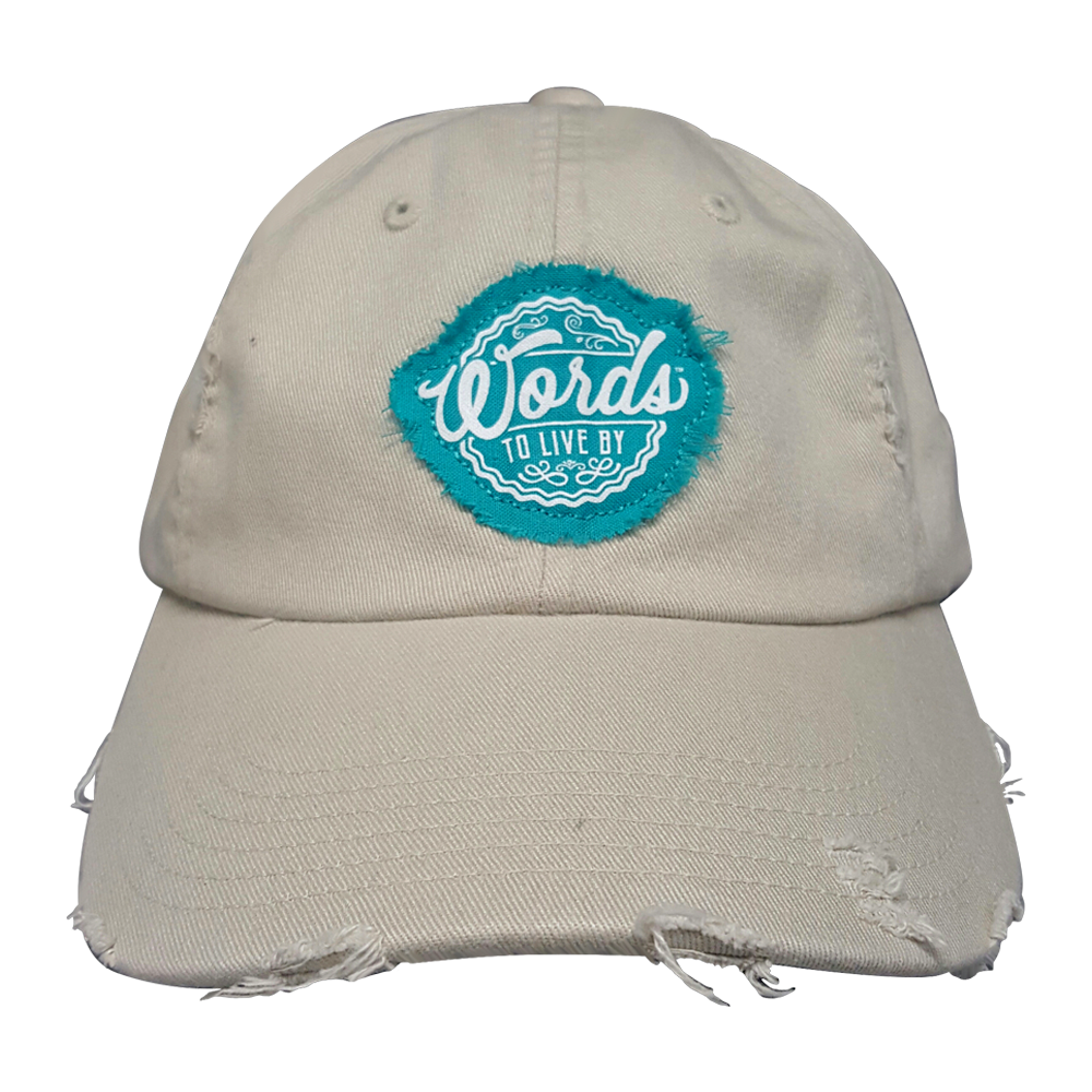 WTLB Distressed Logo Hat Stone Front