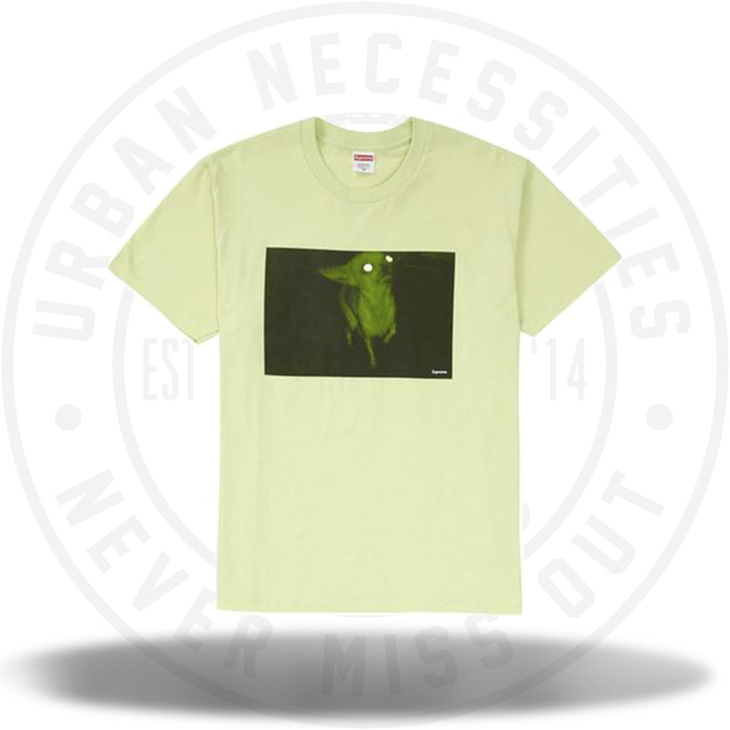 Supreme Chris Cunningham Chihuahua Tee Pale Mint-Urban Necessities