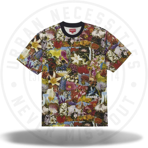 Supreme Dream S/S Top Multicolor-Urban Necessities