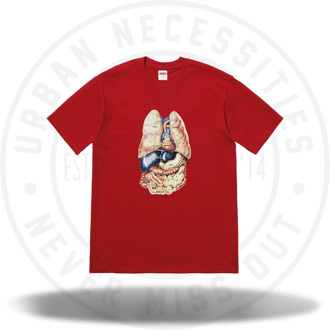 Supreme Guts Tee Red-Urban Necessities