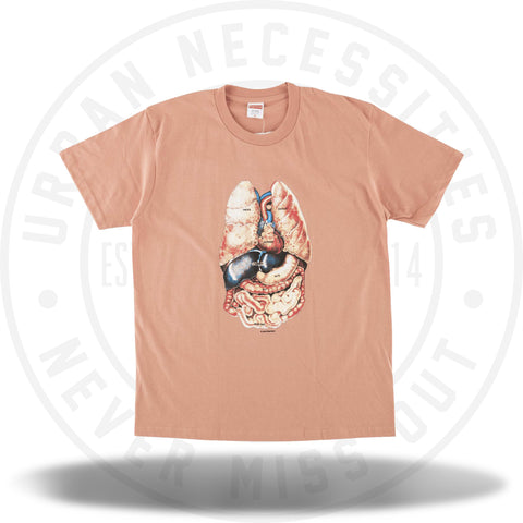 Supreme Guts Tee Terra Cotta-Urban Necessities