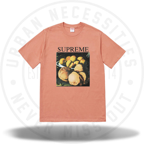 Supreme Still Life Tee Terra Cotta-Urban Necessities