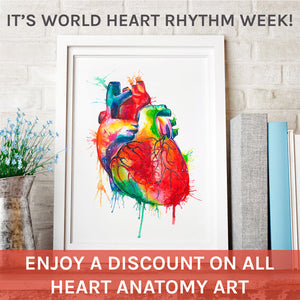 heart anatomy art heart rhythm week banner