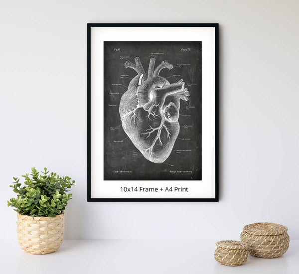 Anatomical heart art print on chalkboard texture by Codex Anatomicus