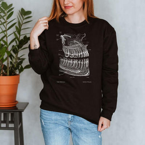 dental anatomy chalkboard sweatshirt for women by codex anatomicus