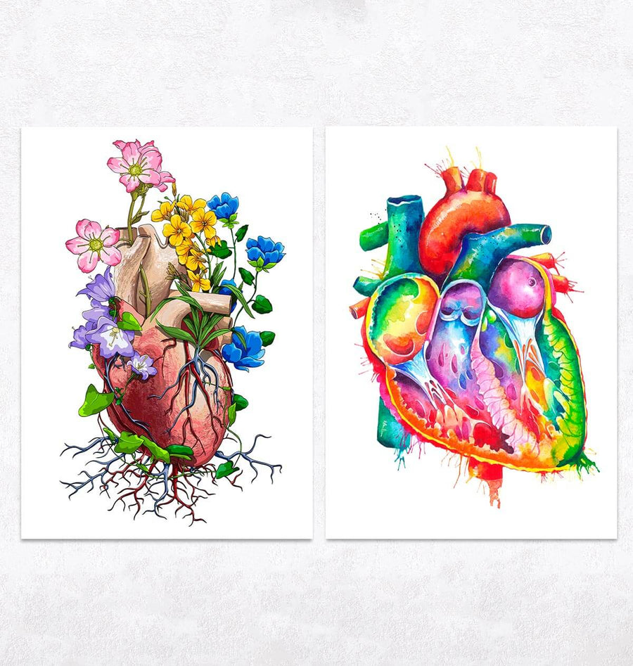 Heart Anatomy Mix - Set of 5