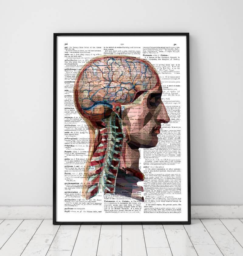 Head and brain dictionary art print