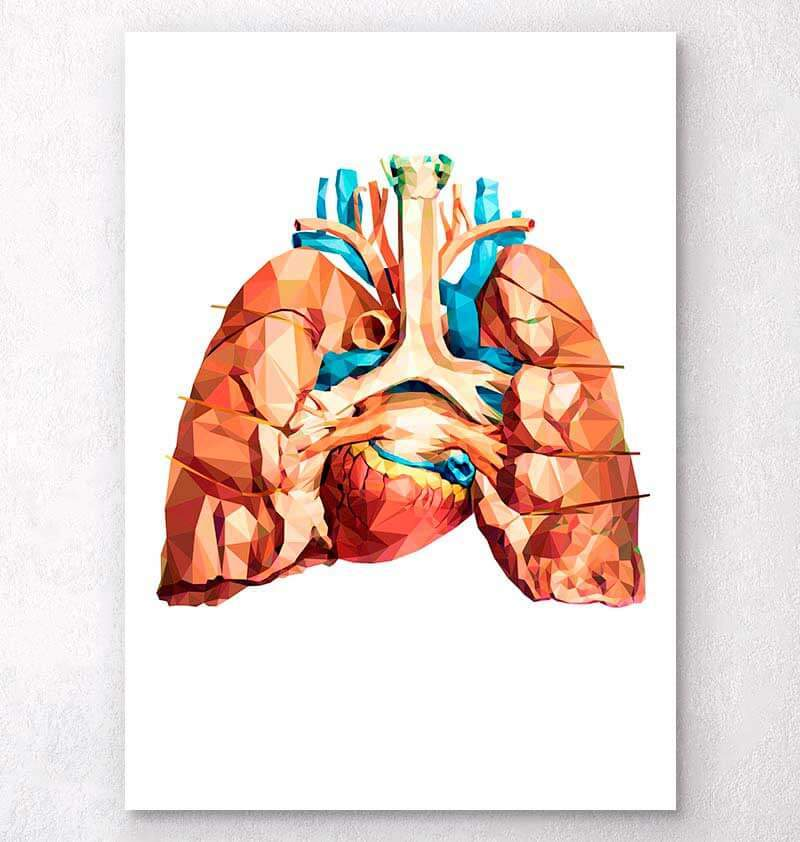Geometrical heart and lungs art
