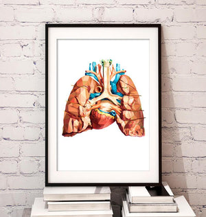 Geometrical heart and lungs anatomy art