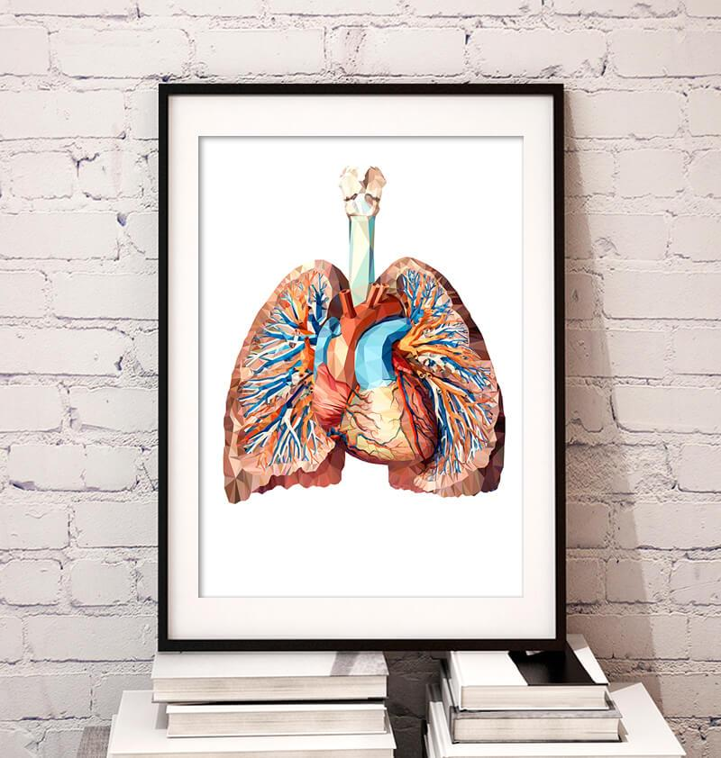 Geometrical Heart And Lungs Art Poster Codex Anatomicus