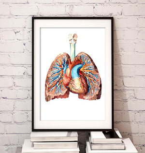 Geometrical Heart and lungs anatomy art poster by codex anatomicus