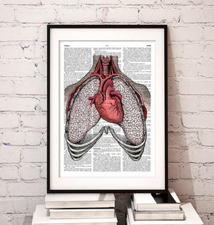 Heart and lungs anatomy dictionary art print