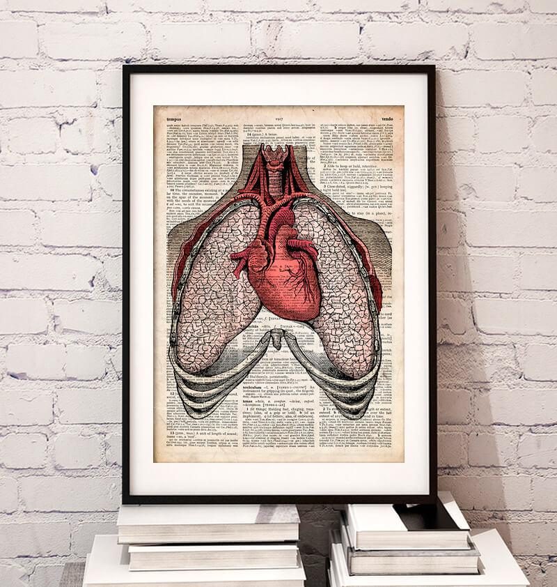 Heart and lungs dictionary art print