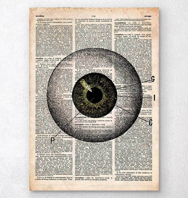 Eye anatomy - Old dictionary page