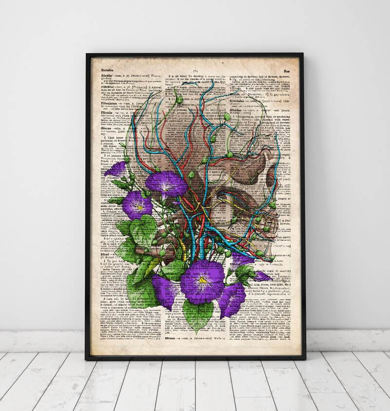 Skull with flowers anatomy poster
