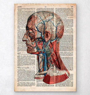 Geometric head dictionary print