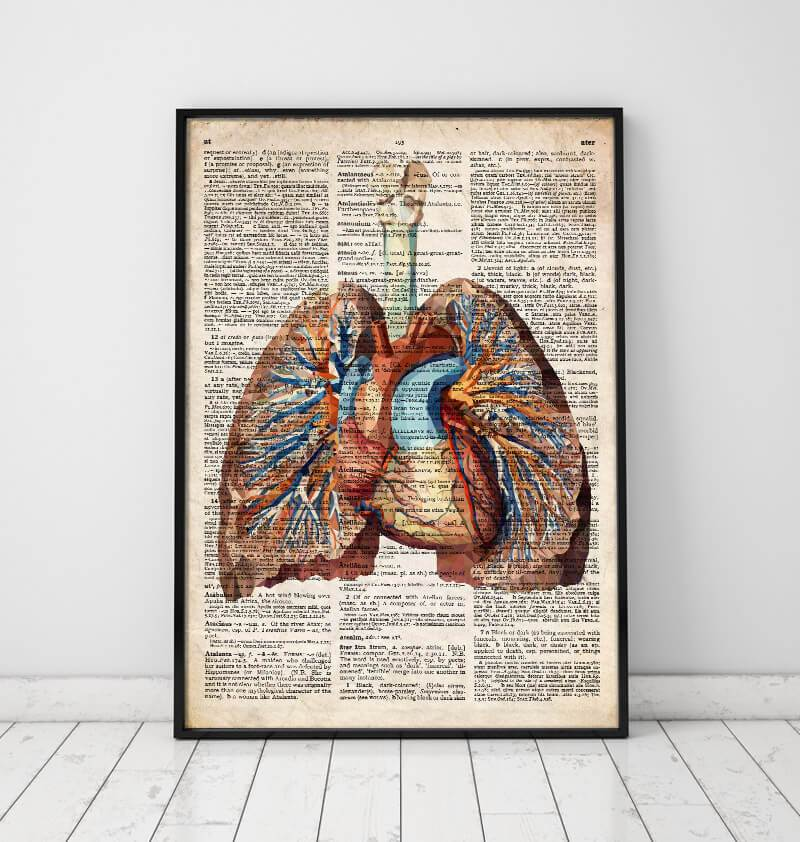 Geometric heart and lungs anatomy art poster on Old dictionary page