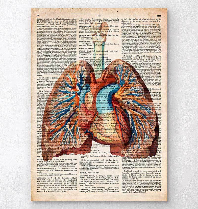 Heart and lungs dictionary print