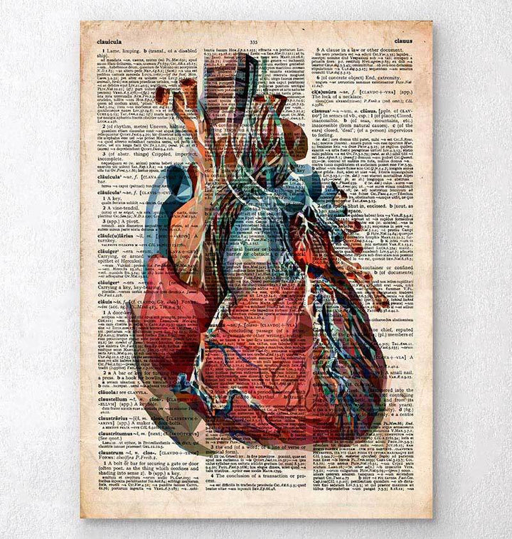 Heart anatomy dictionary print