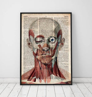 Geometric face anatomy poster on old dictionary page