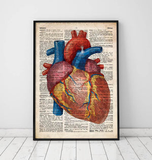 Geometric heart anatomy art print old dictionary page