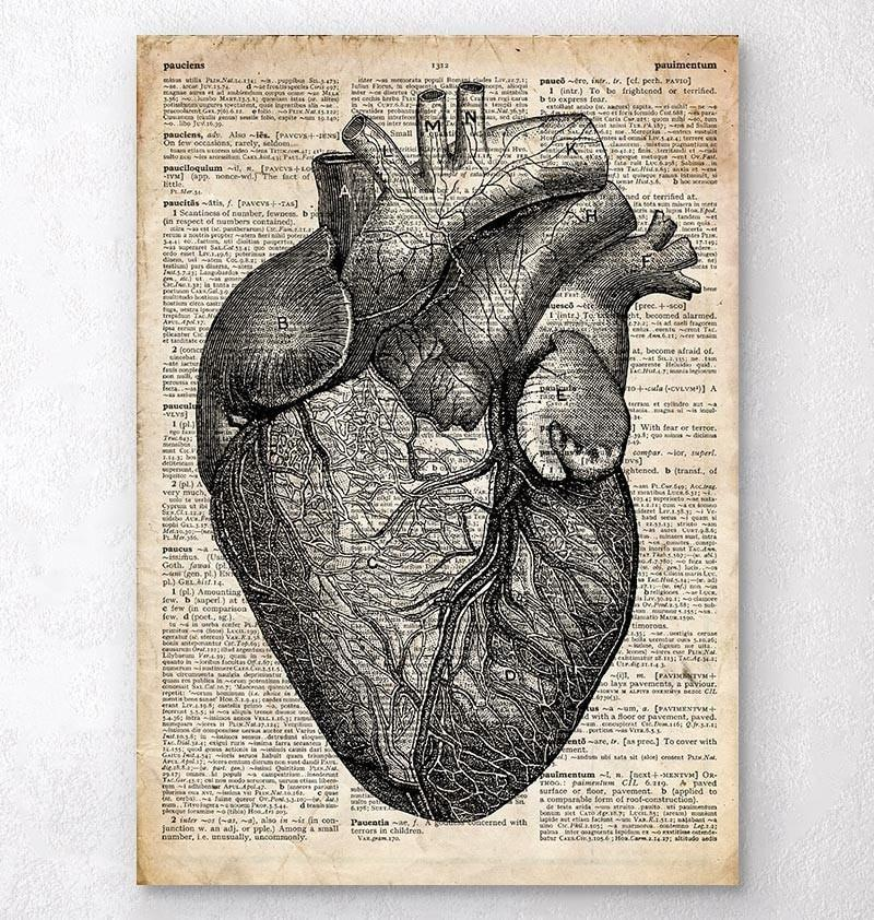 Heart anatomy medical art print - dictionary page - Codex Anatomicus