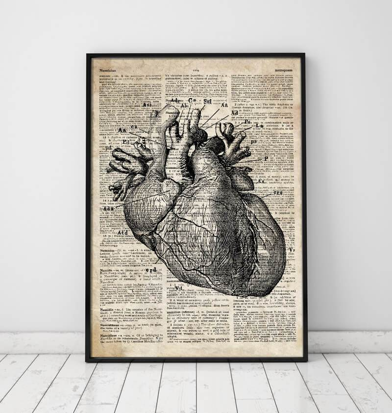 Heart anatomy art I - Old dictionary page