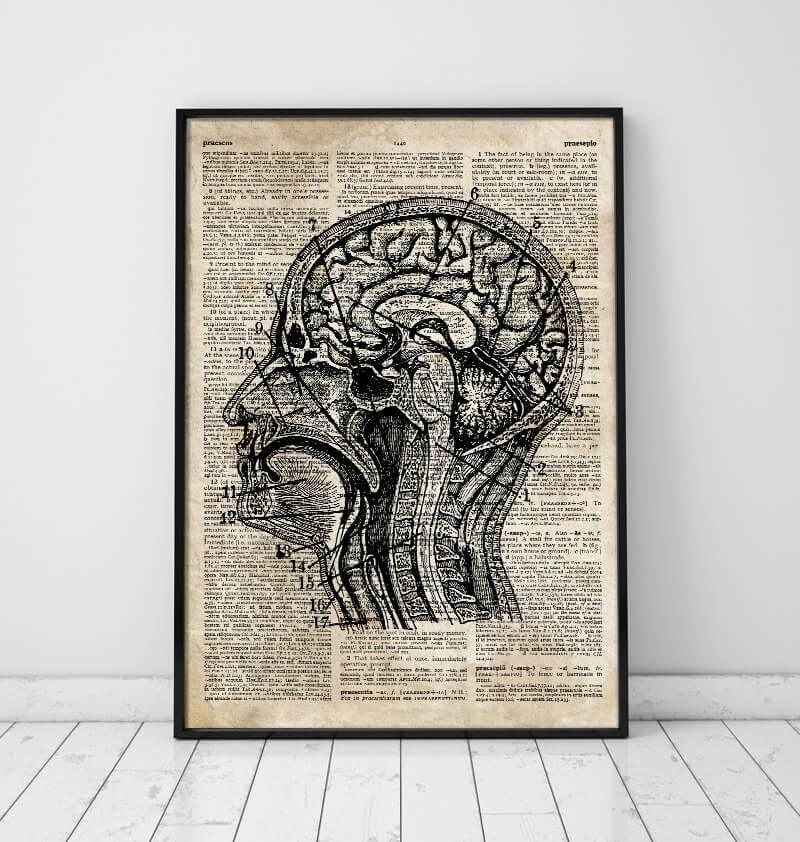 Head section poster