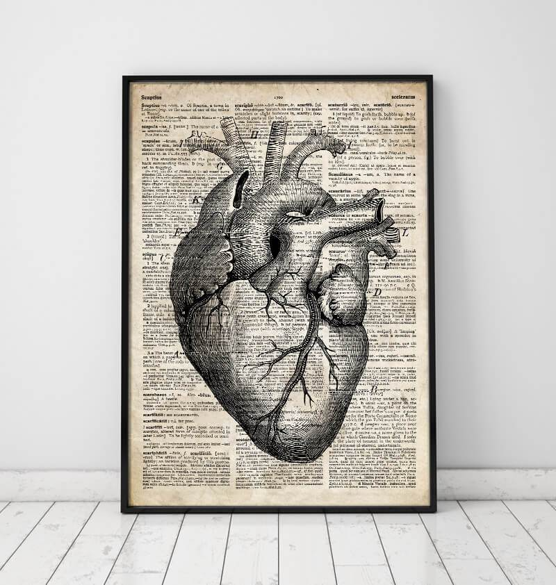 Heart anatomy art II - Old dictionary page