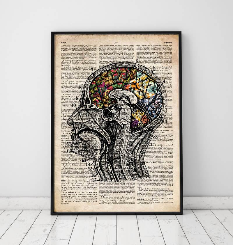 Brain anatomy art poster on old dictionary page