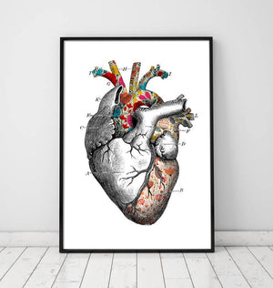 Floral pattern heart anatomy art poster